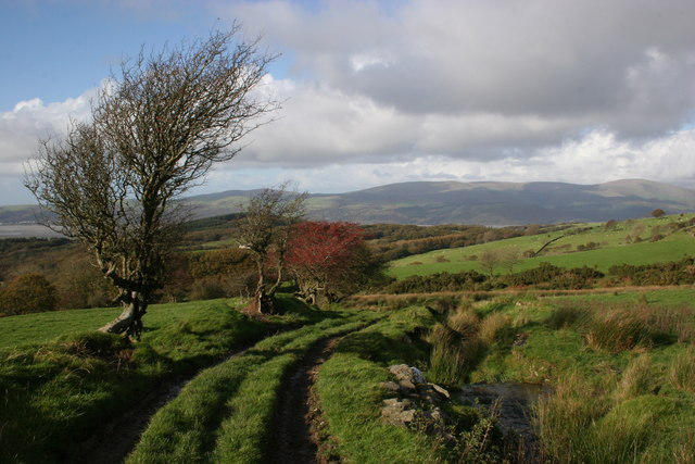 File:Above Gwar-Cwm - geograph.org.uk - 1117668.jpg
