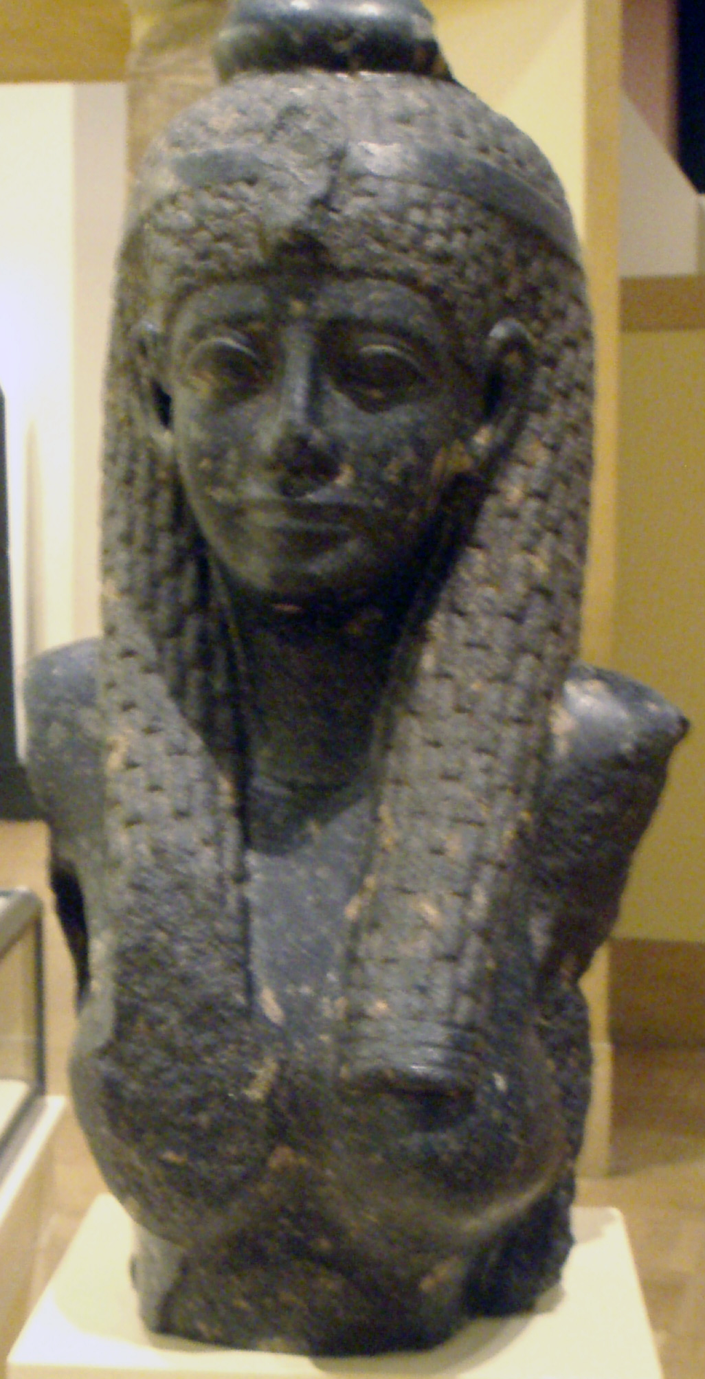 a biography of cleopatra vii Cleopatra was a queen of egypt but she was not egyptian she was the last of  the macedonian greek dynasty that ruled egypt from the time of alexander the.