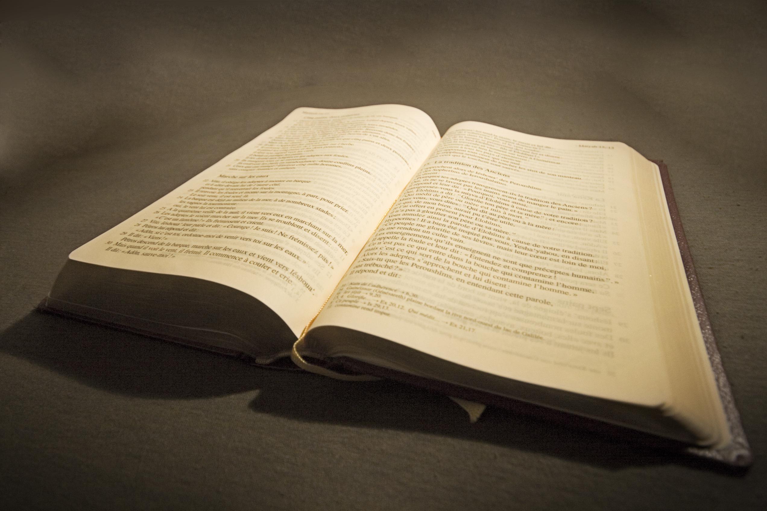 Public-Domain Bible Illustrations