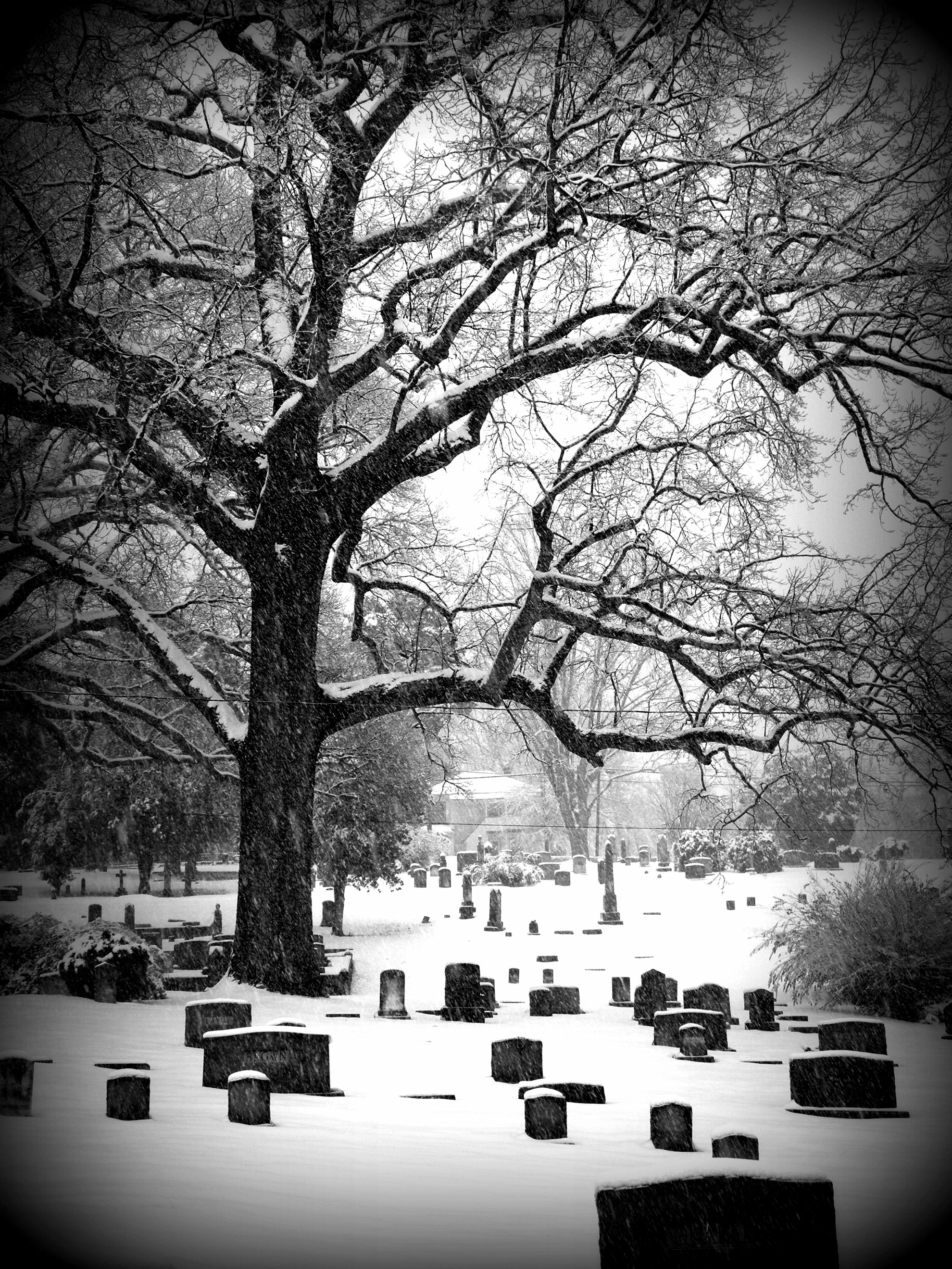 The cemetery in Charlottesville, Virginia, USA in the snow