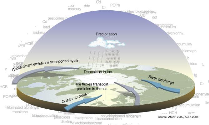 Contamination pathways large.jpg