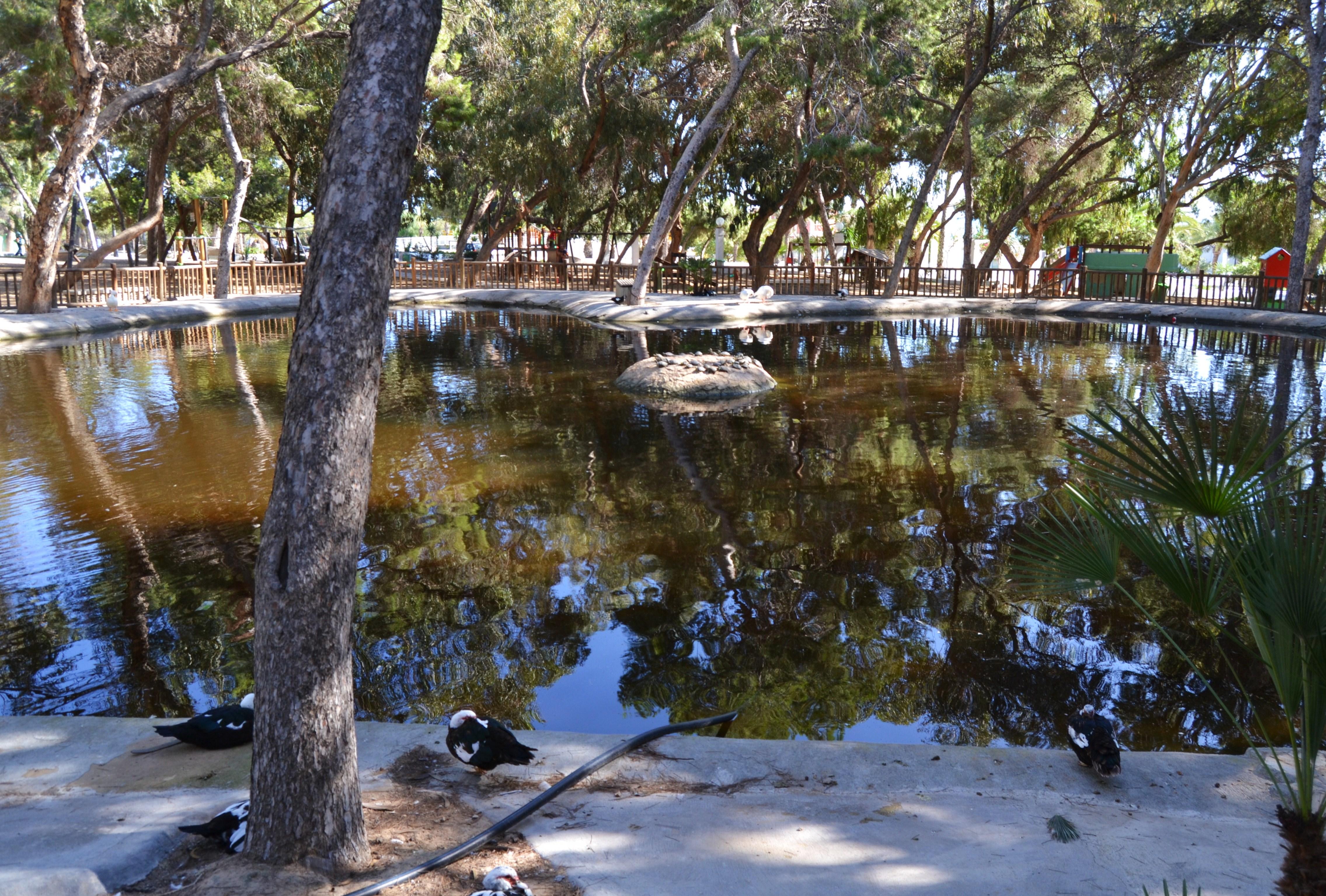 Estany gran del parc reina Sofia de Guardamar del Segura.JPG