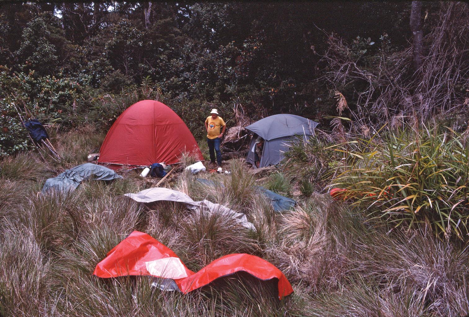 New field camp
