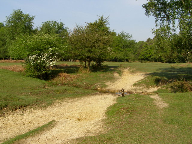 Ford between Stricknage Wood and Blackthorn Copse, New Forest - geograph.org.uk - 805031