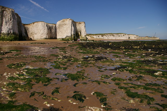 Foreness Point from Botany Bay (low tide) - geograph.org.uk - 248364