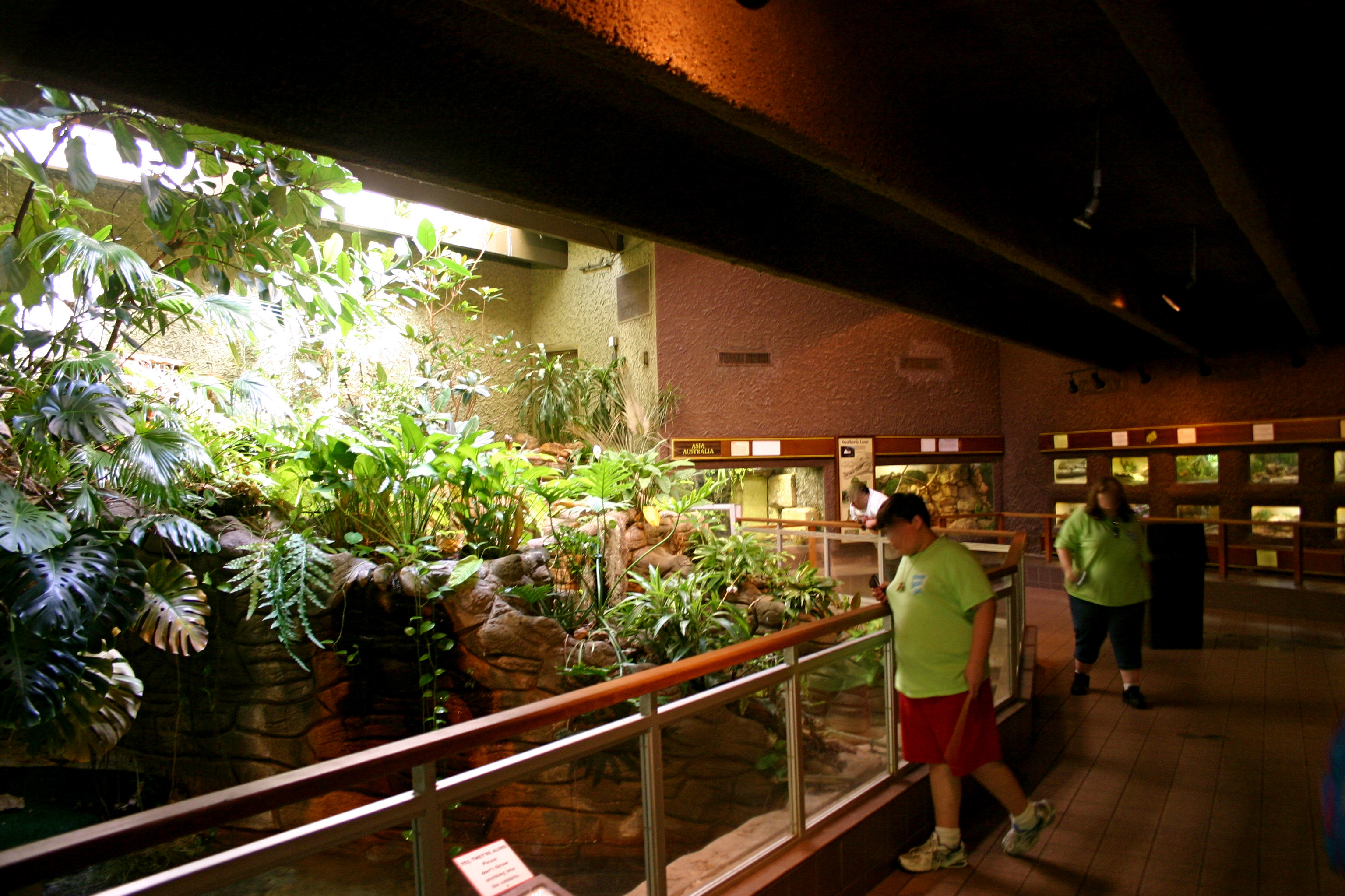 The Reptile Room Part