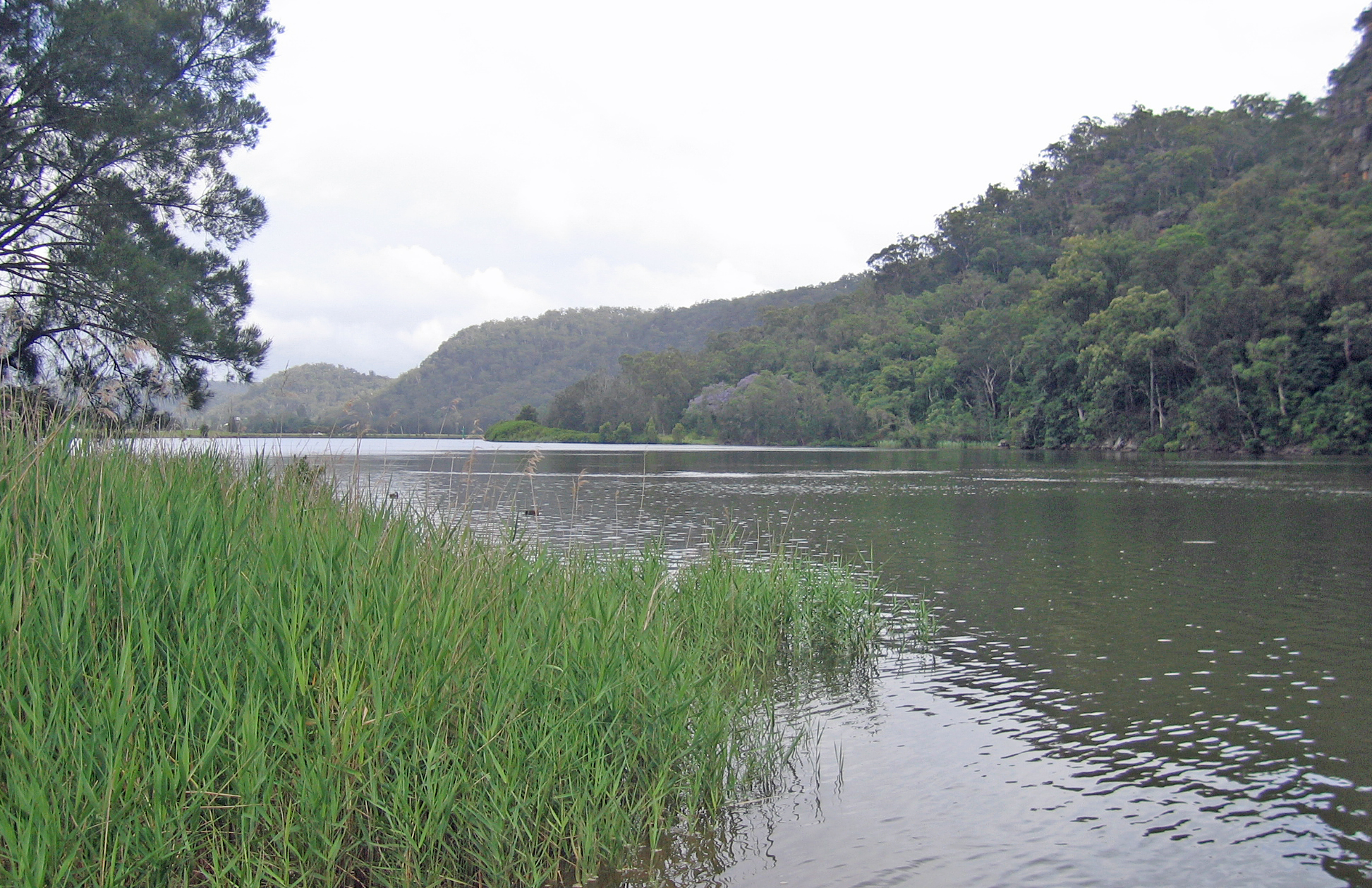 Wisemans Ferry Australia  city photos gallery : Hawkesbury River at Wisemans Ferry Wikimedia Commons