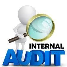Internal auditor job description for fcpa