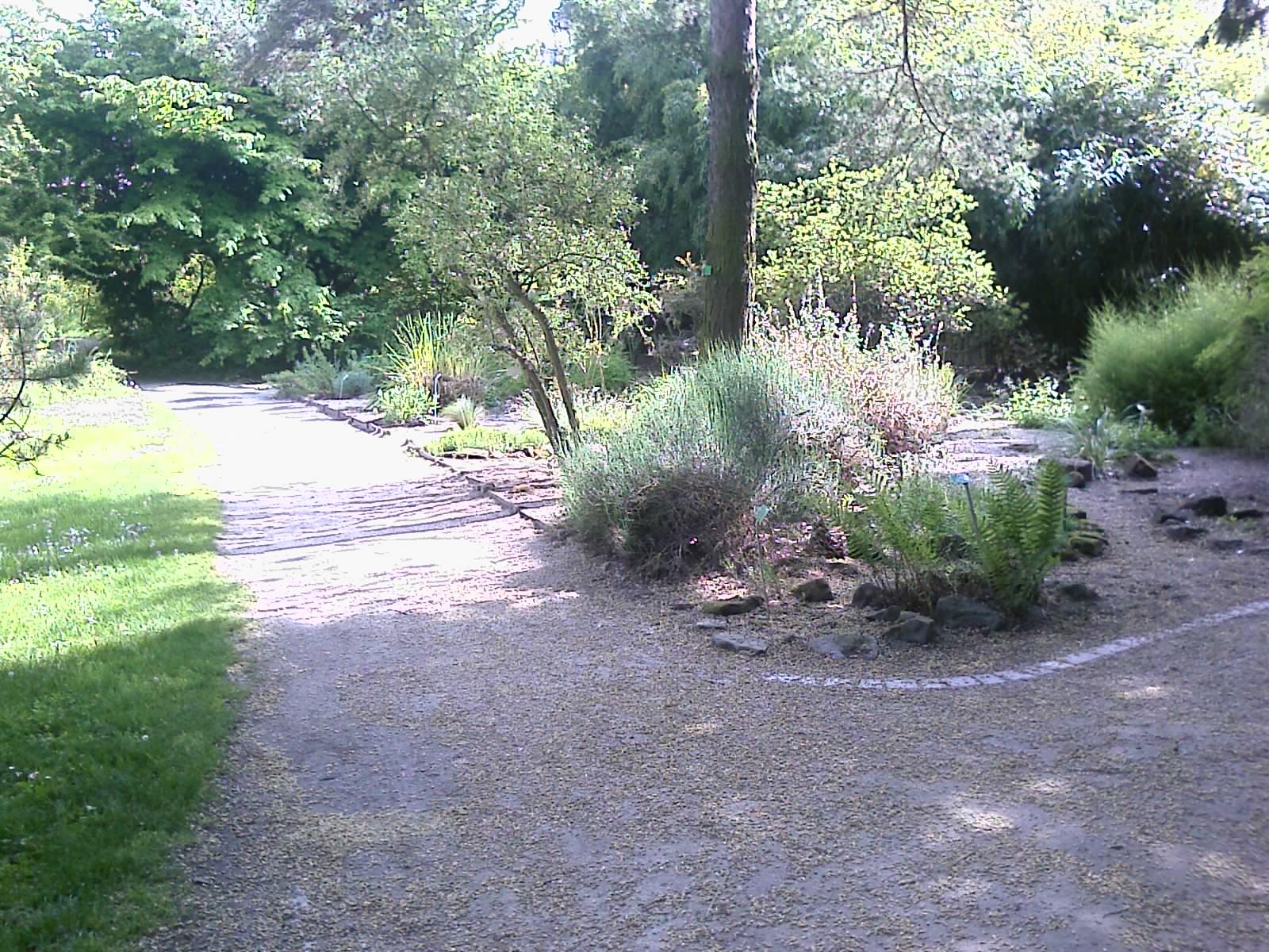 File Jardin botanique Strasbourg 3 Wikimedia mons