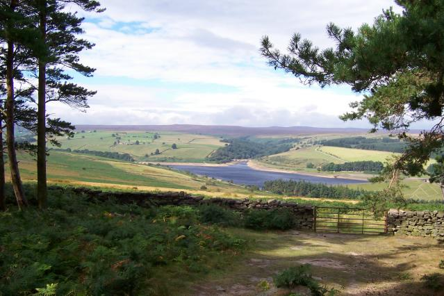 Leighton Reservoir looking west from Druids Plantation - geograph.org.uk - 403856