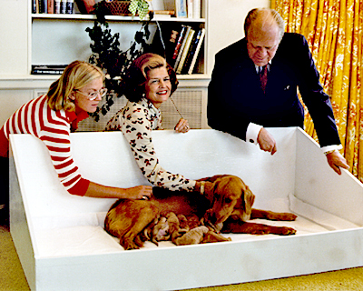 File:Liberty with her puppies & GeraldFord's Family at the WhiteHouse.jpg