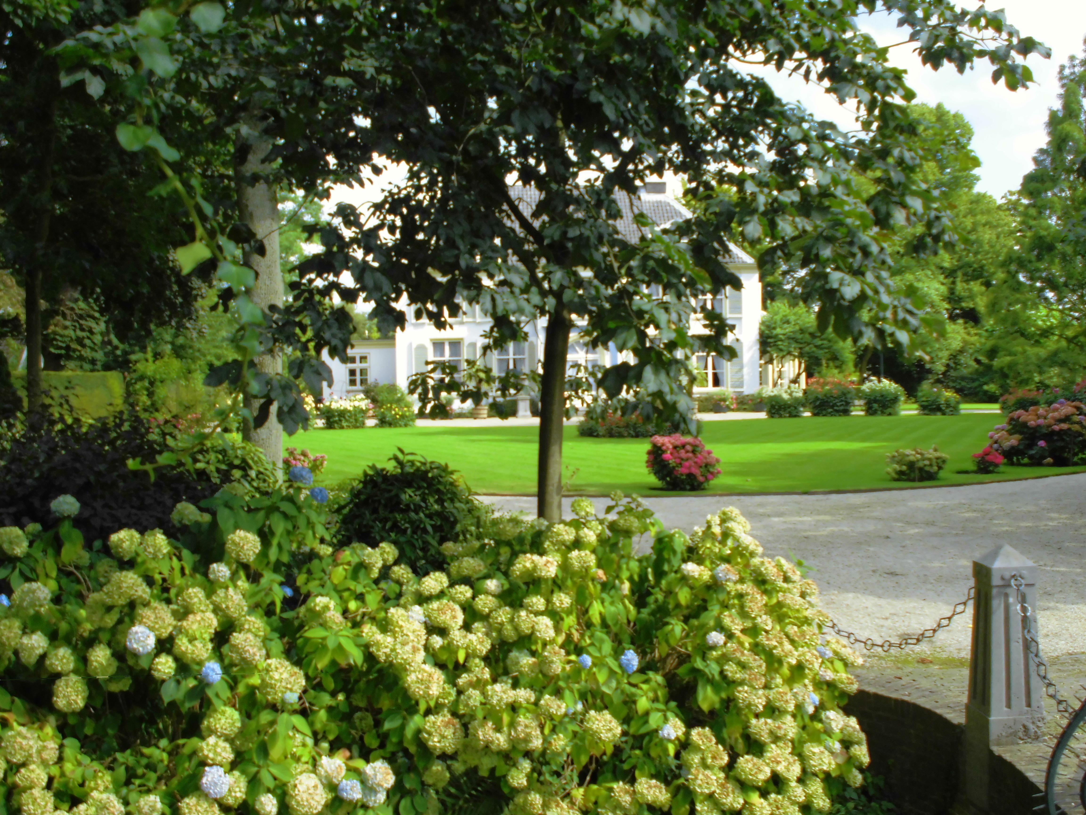 Tuin aankleden tuinadvies kleine tuin inrichten with tuin for Tuin renoveren tips