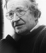Noam Chomsky is one of the most important linguistic theorists of the 20th century. Noam chomsky cropped.jpg