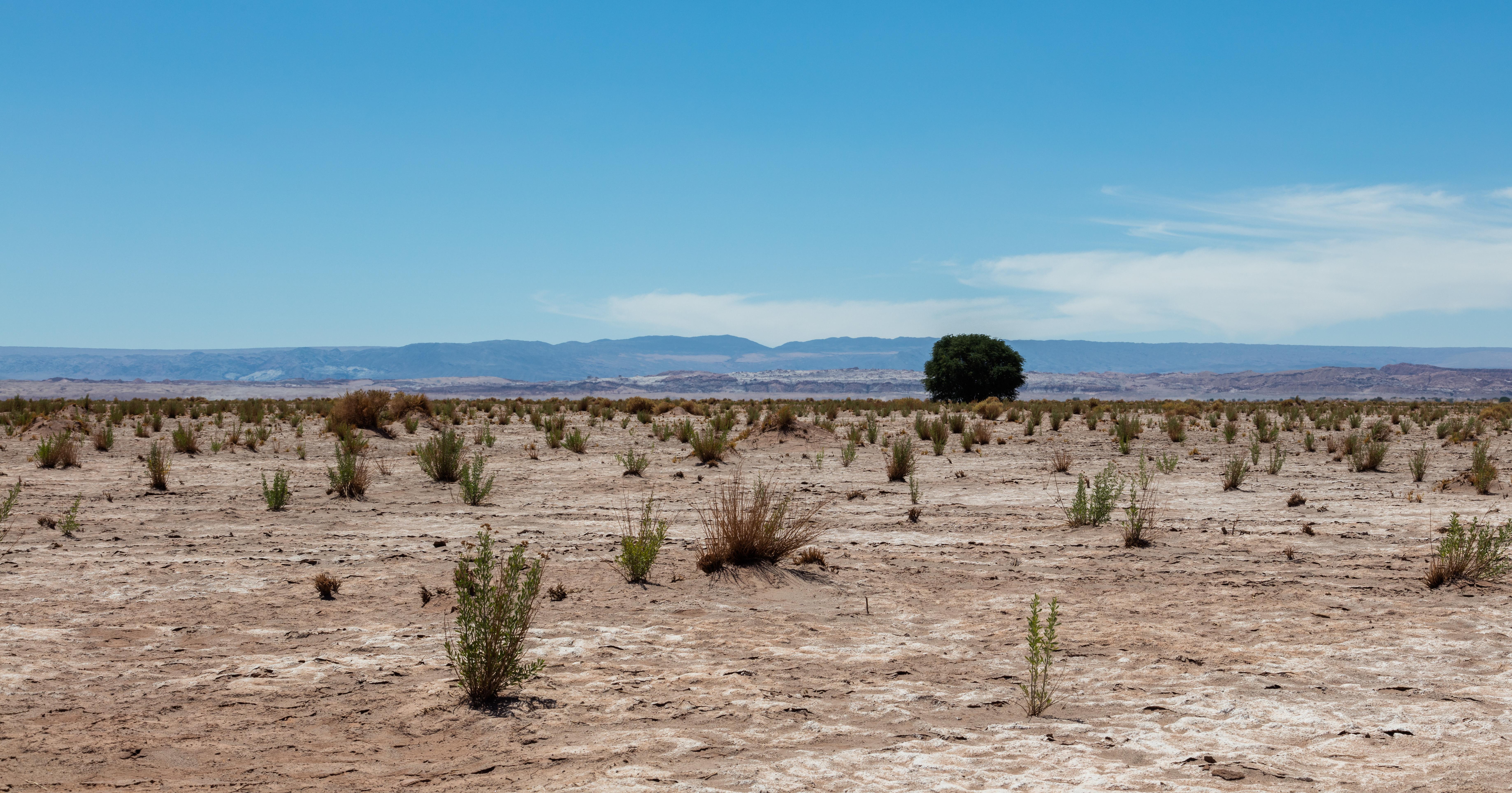Archivo:Paisaje en el desierto de Atacama, Chile, 2016-02-06, DD 16 ...