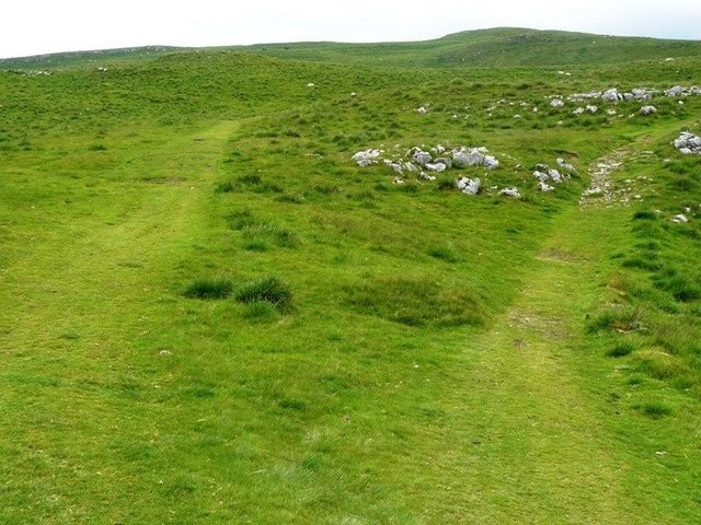 Path to Malham on Kirkby Fell - geograph.org.uk - 1367039