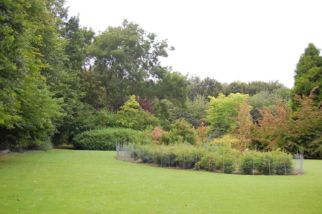 Pilgrims' Lawn, Anglesey Abbey - geograph.org.uk - 920507