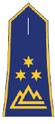 Policijski-svetnik II.png