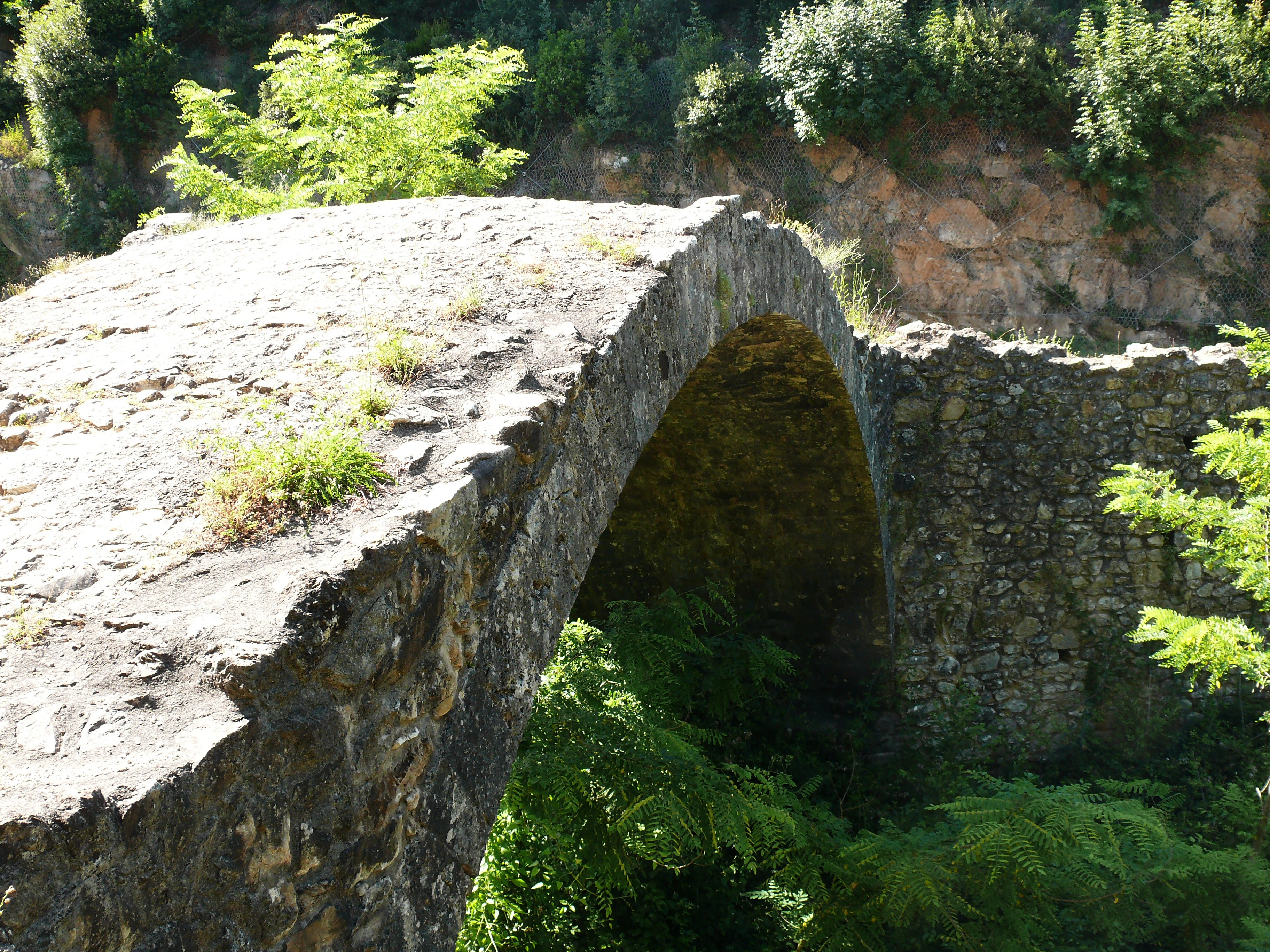 Ponte della Pia.JPG