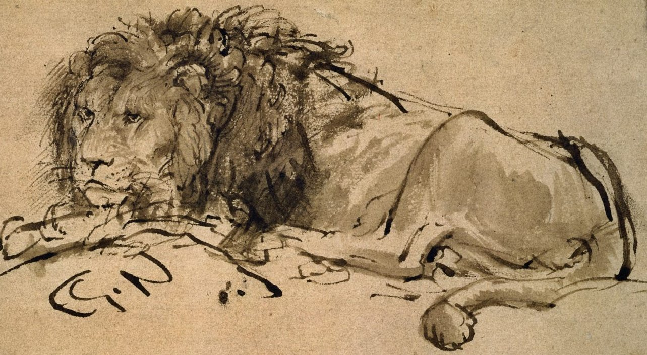 Pen and wash lion by Rembrandt in the Louvre