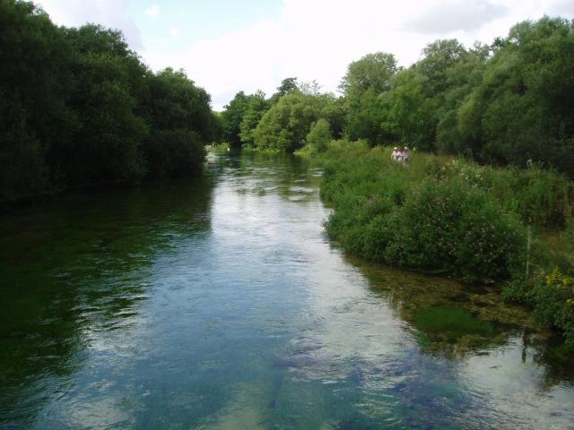 River Itchen near the Bush Inn, Ovington - geograph.org.uk - 211520