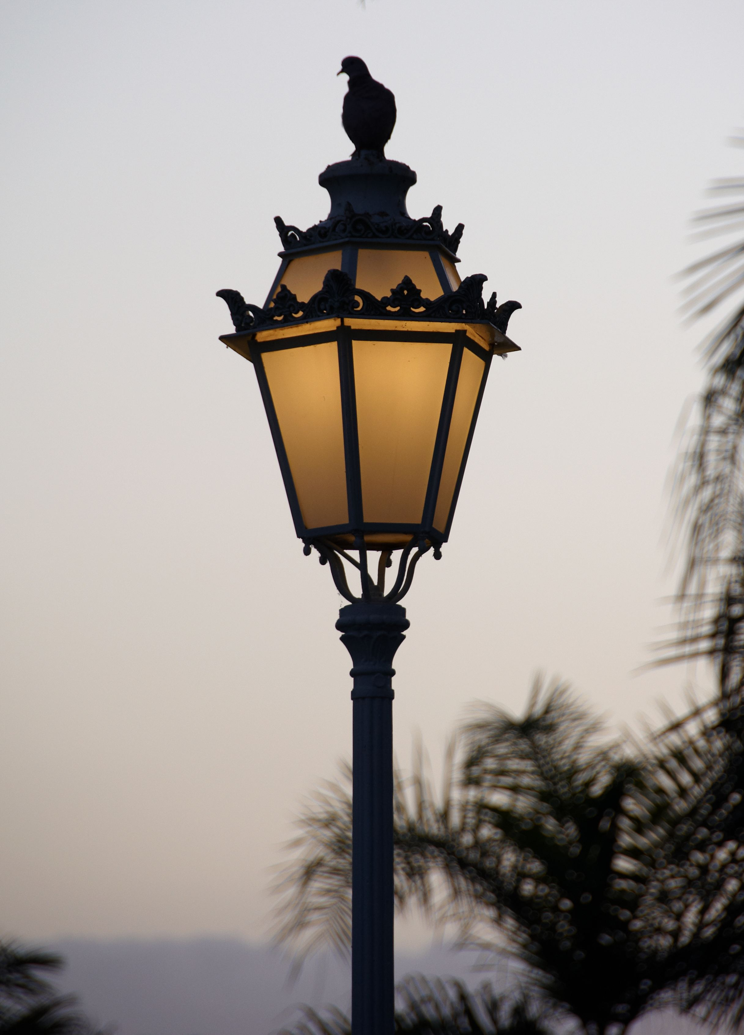 the lamppost Between you, me, and the lamppost in complete confidence between the speaker and the listener, as of a forthcoming secret or rumor now, this is between you, me, and the.