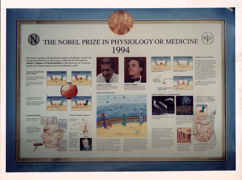 Nobel prizes in medicine history
