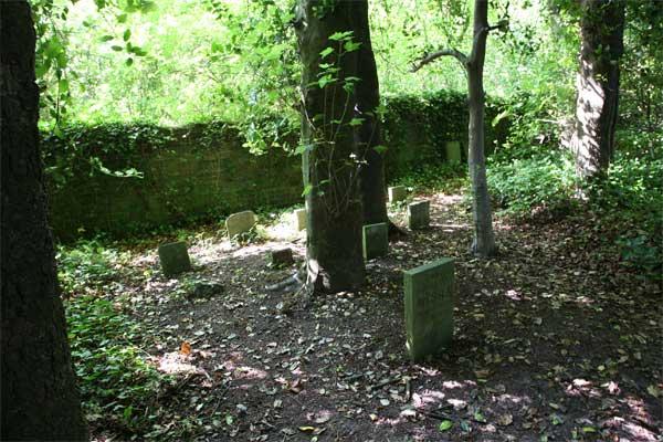 Risultati immagini per Thomas Hardy animal cemetery