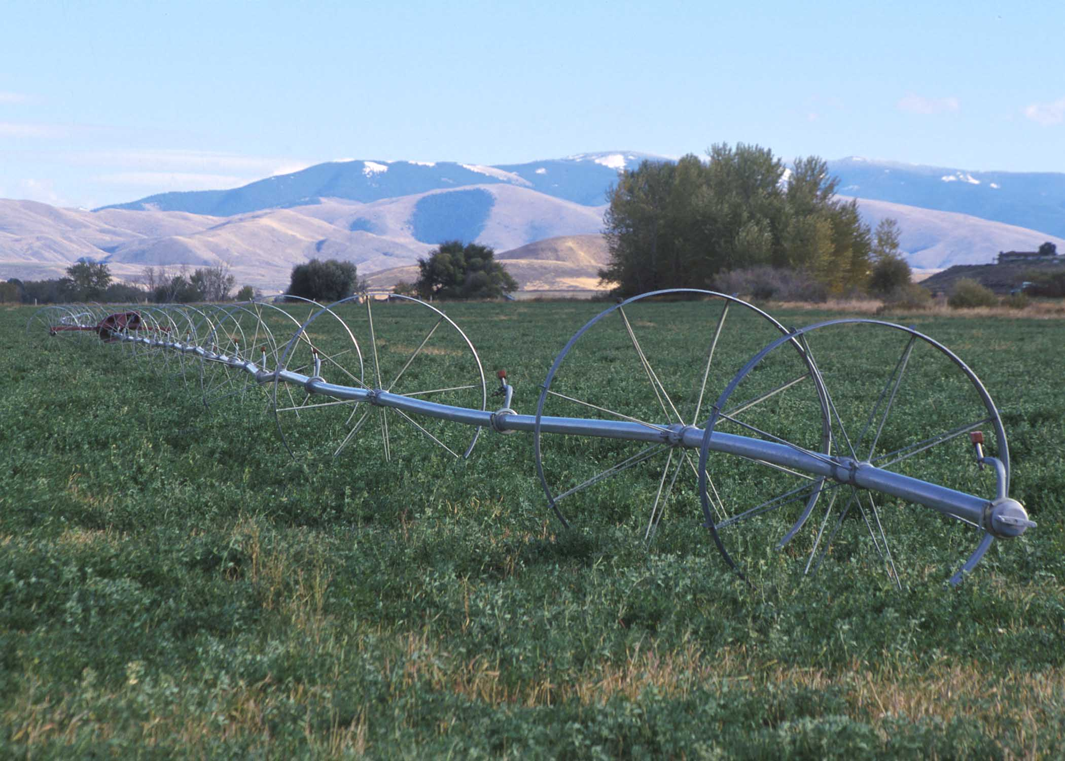 Agricultural Irrigation Parts : File wheellineirrigation g wikimedia commons