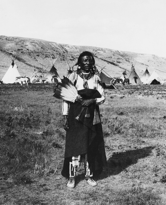 Montana Native Plants: Australian Aborigines/Blacks Were In The Americas Before
