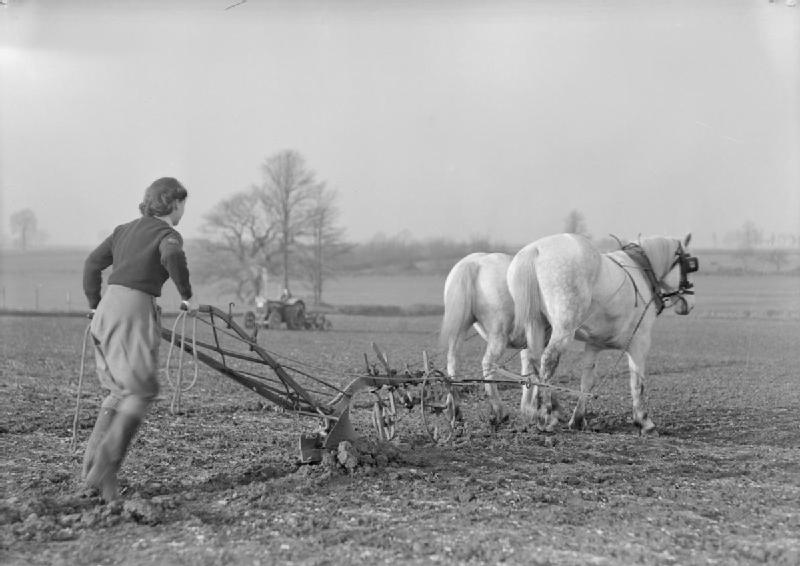 File Women S Land Army Training At Cannington Farm