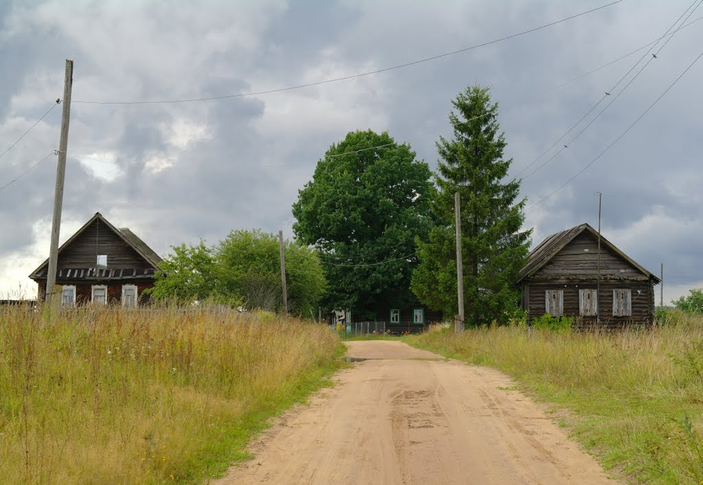 деревня лопатино пеновский район