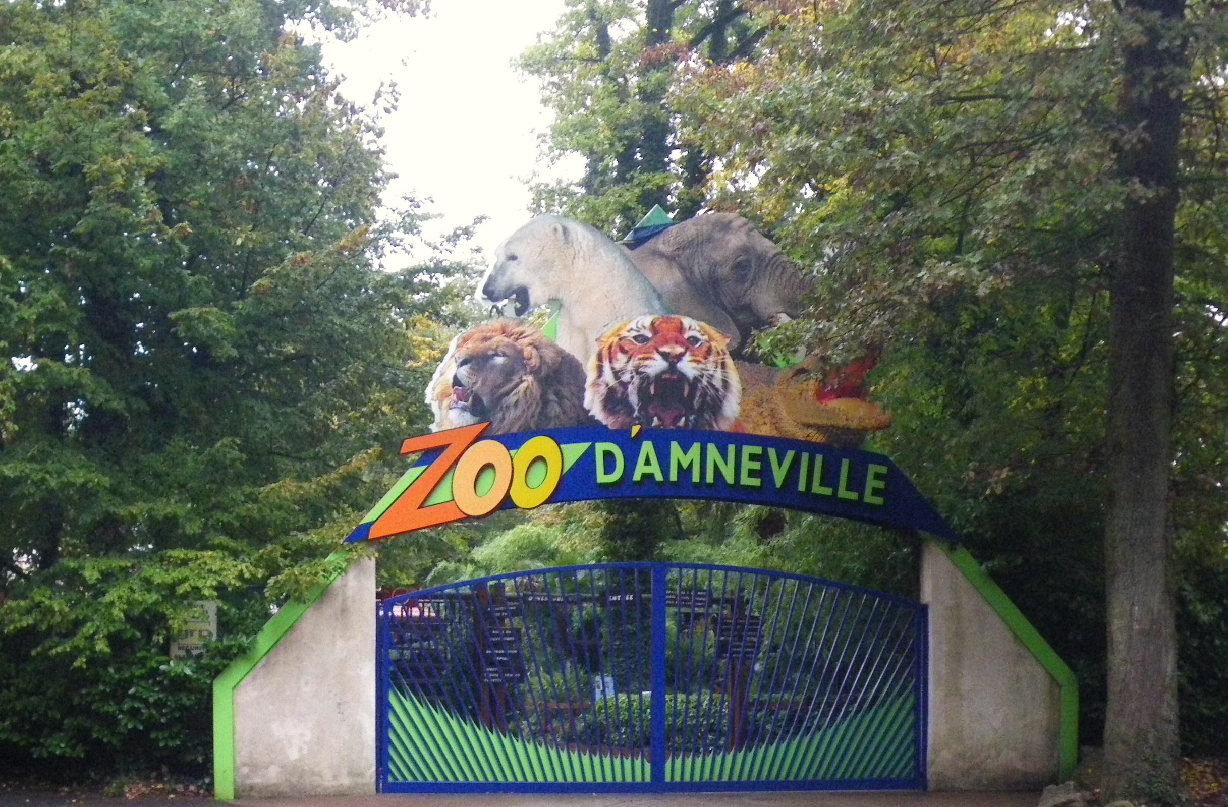 Parc Zoologique D 39 Amn Ville Wikiwand