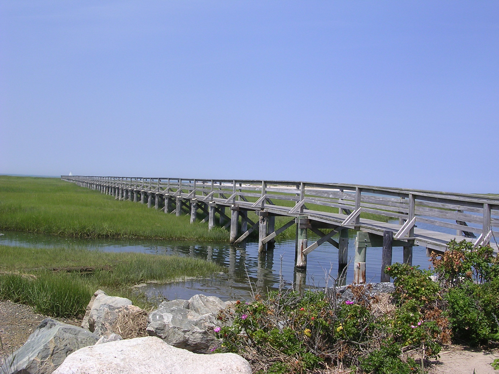 Image result for Bass Hole Boardwalk