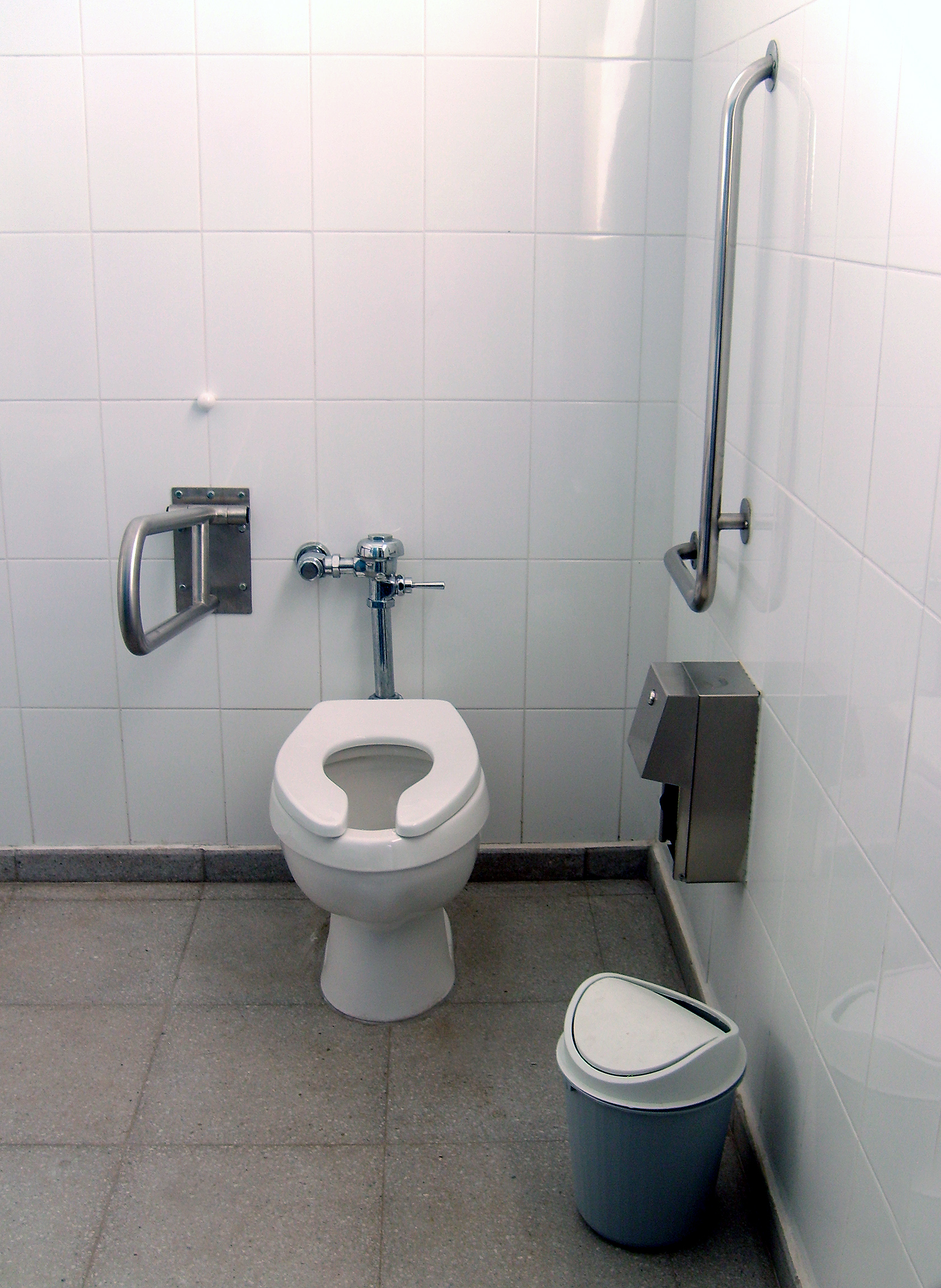 File:Bathroom Disabled People.jpg - Wikimedia Commons