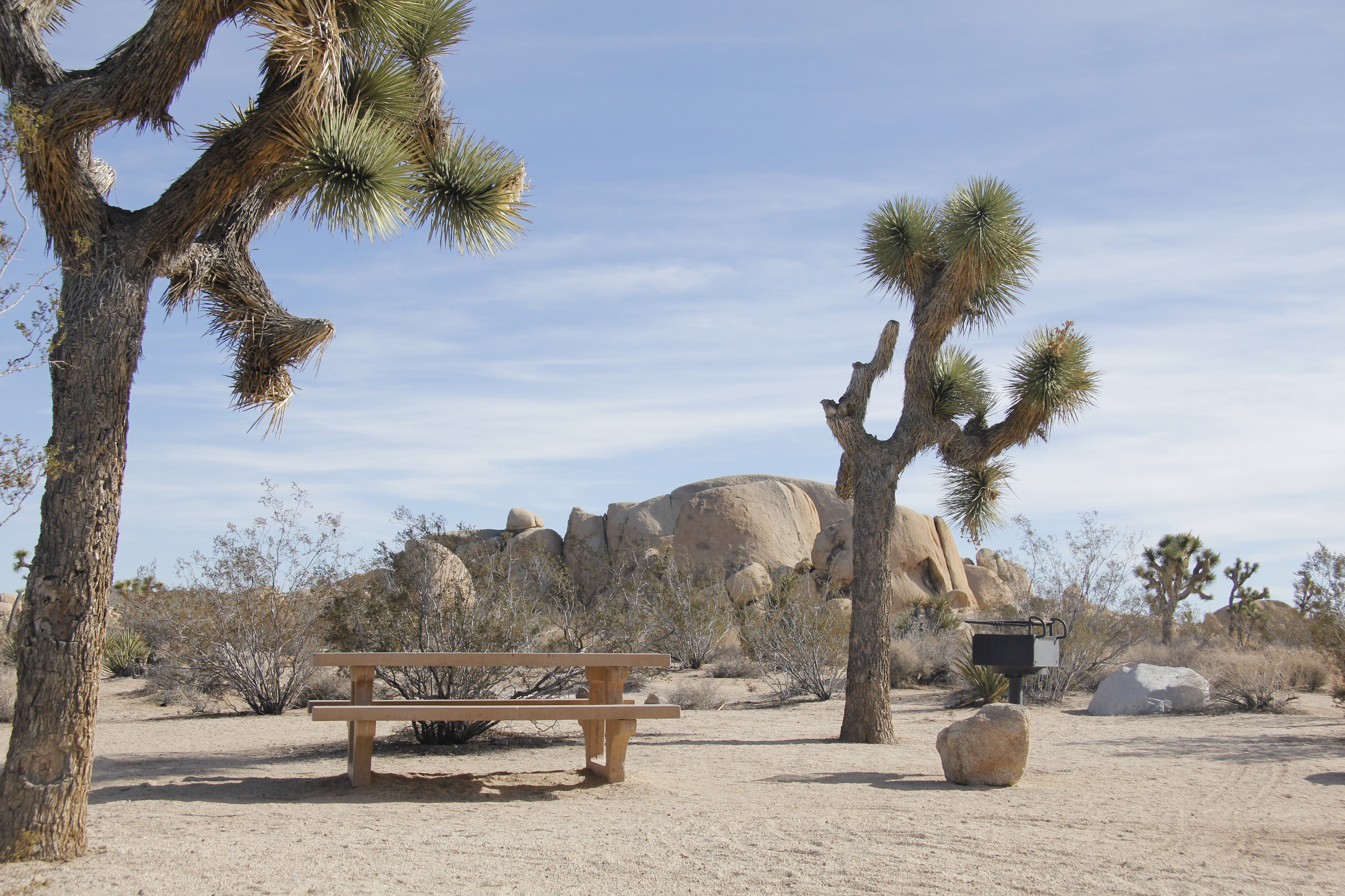 File Belle Campground In Joshua Tree National Park 09 Jpg