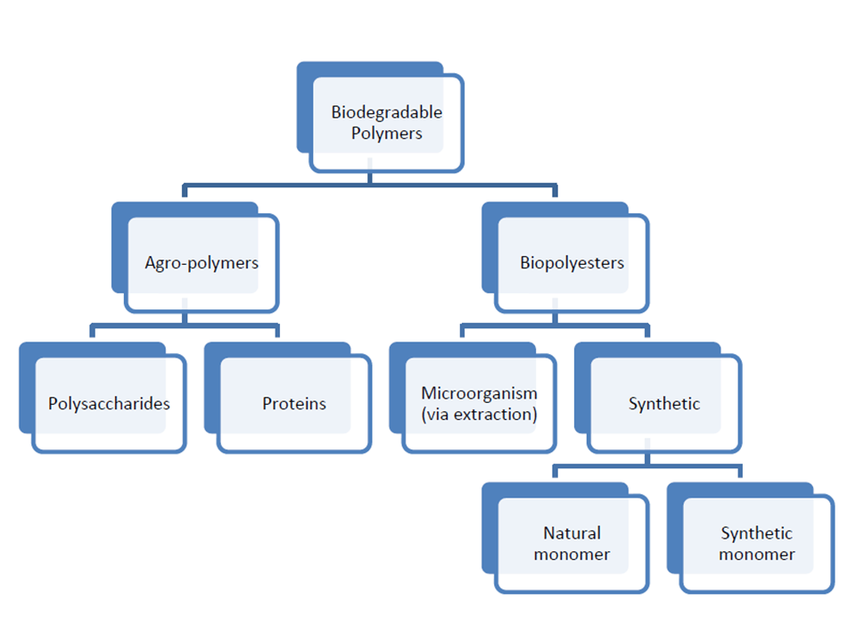 File:Biodegradable Polymers Flow Chart.png - Wikimedia Commons
