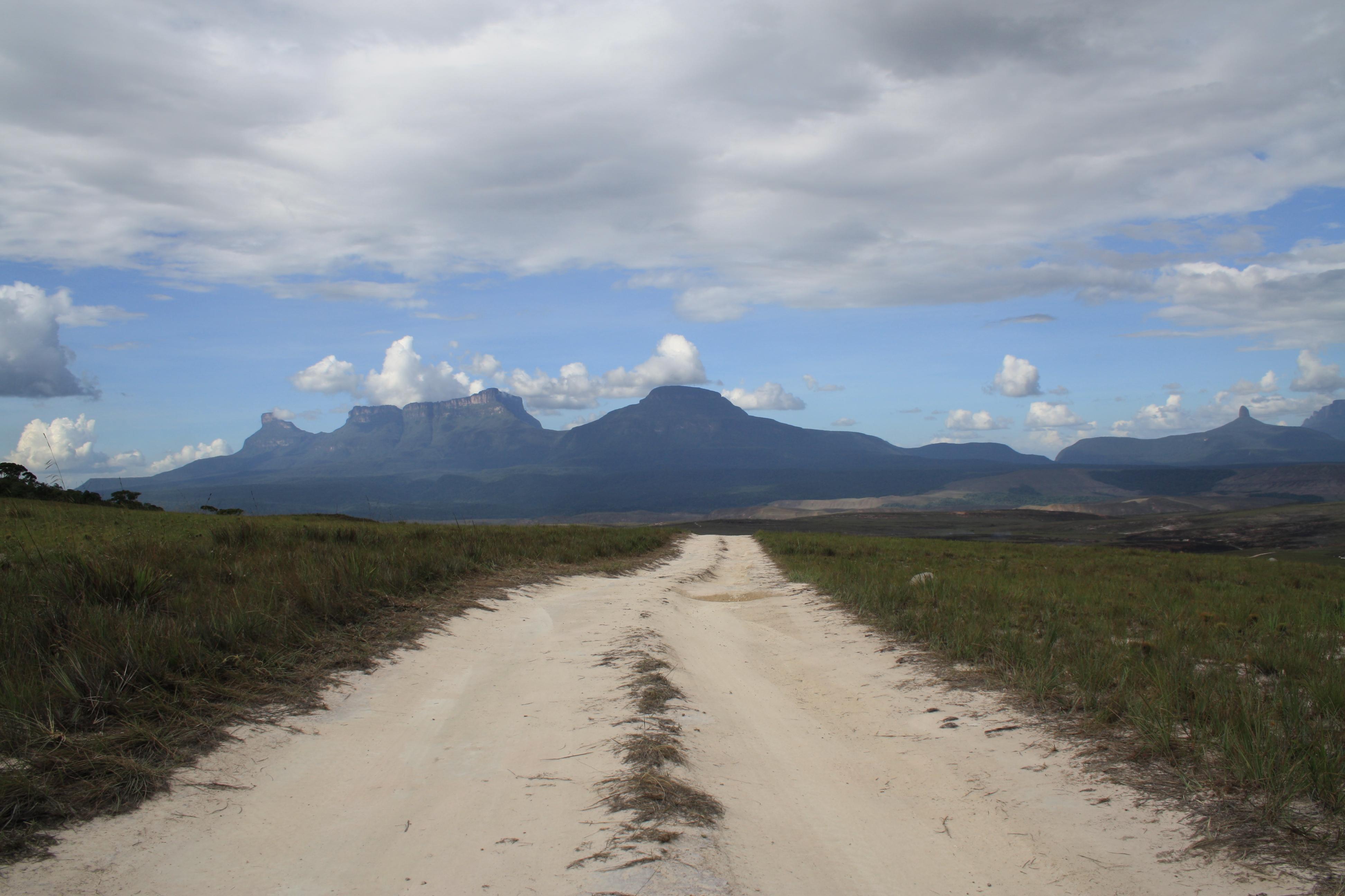 Camino en la Gran Sabana.JPG