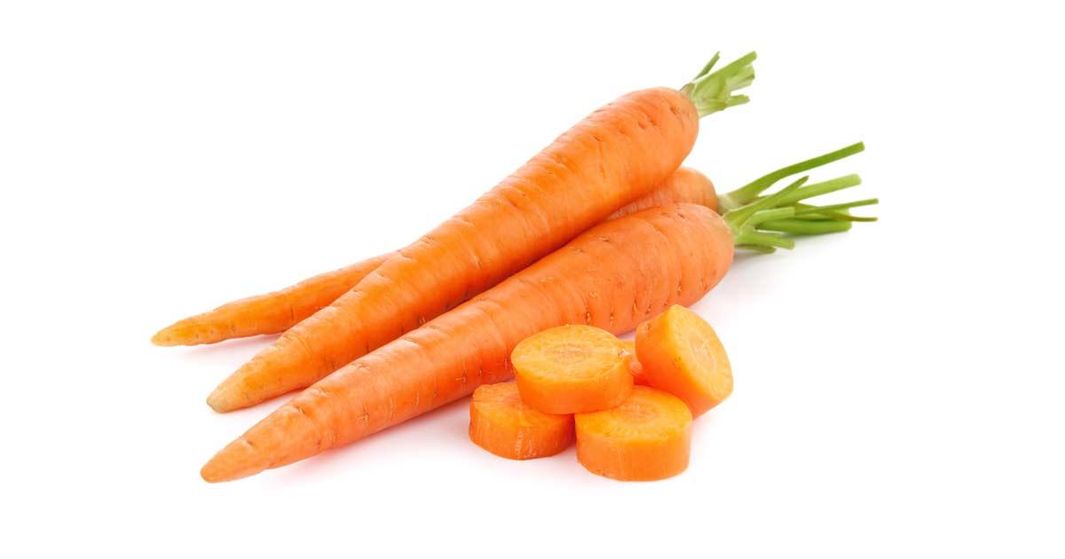 Картинки морковка на белом фоне, картинки учебы картинки