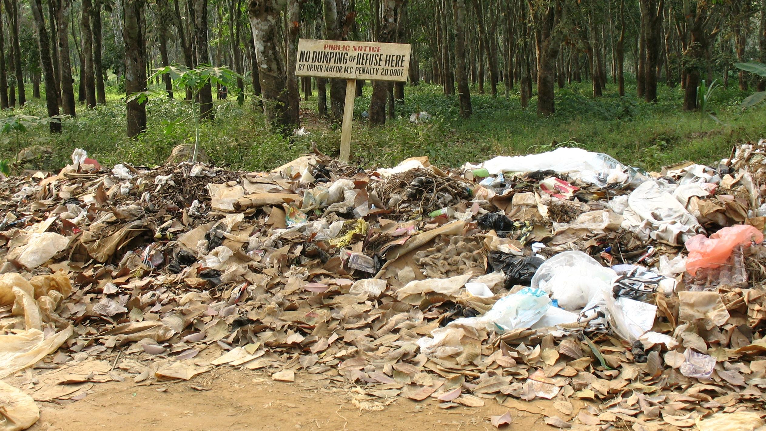 Waste land documentary essay