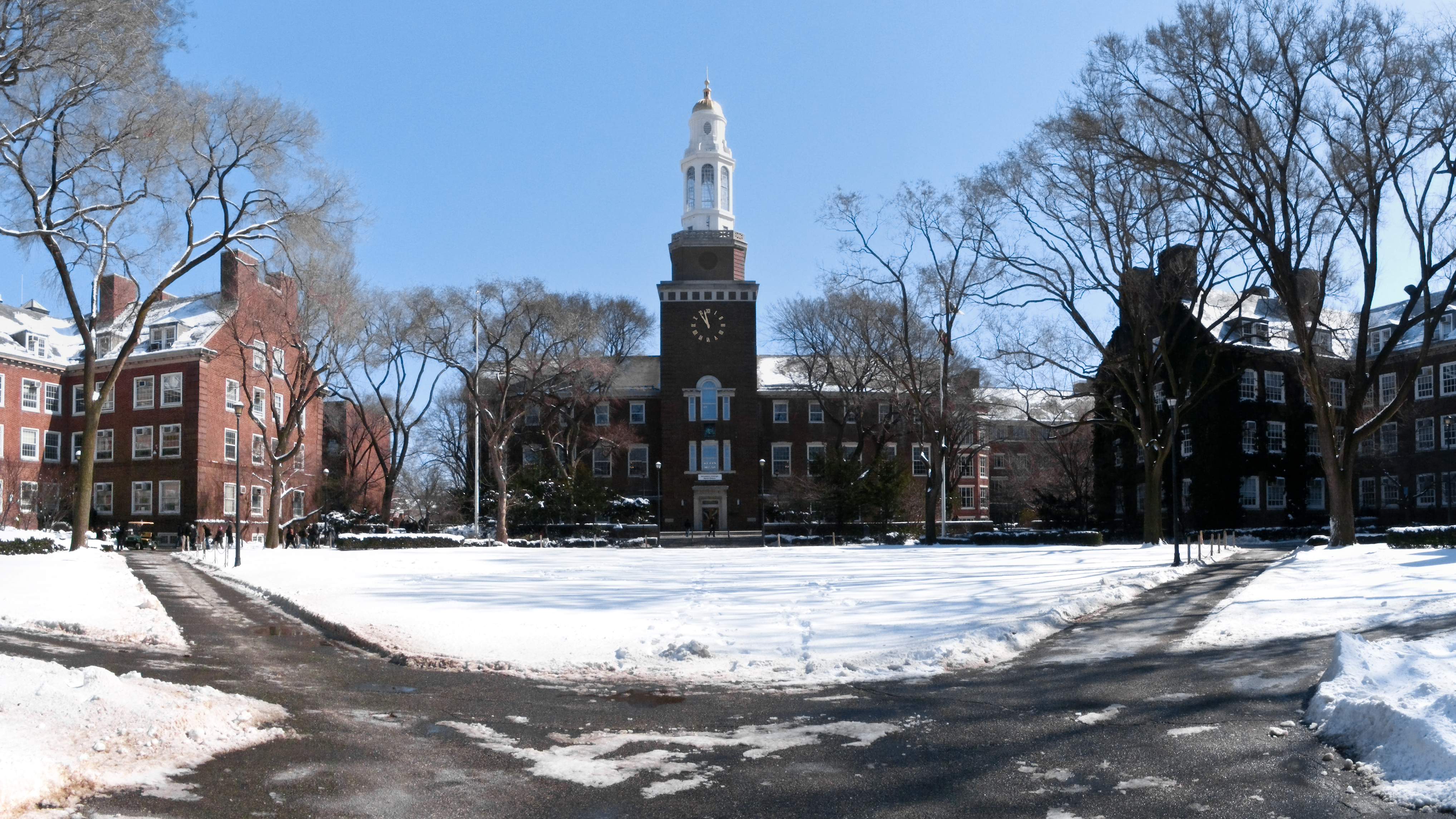image of Brooklyn College