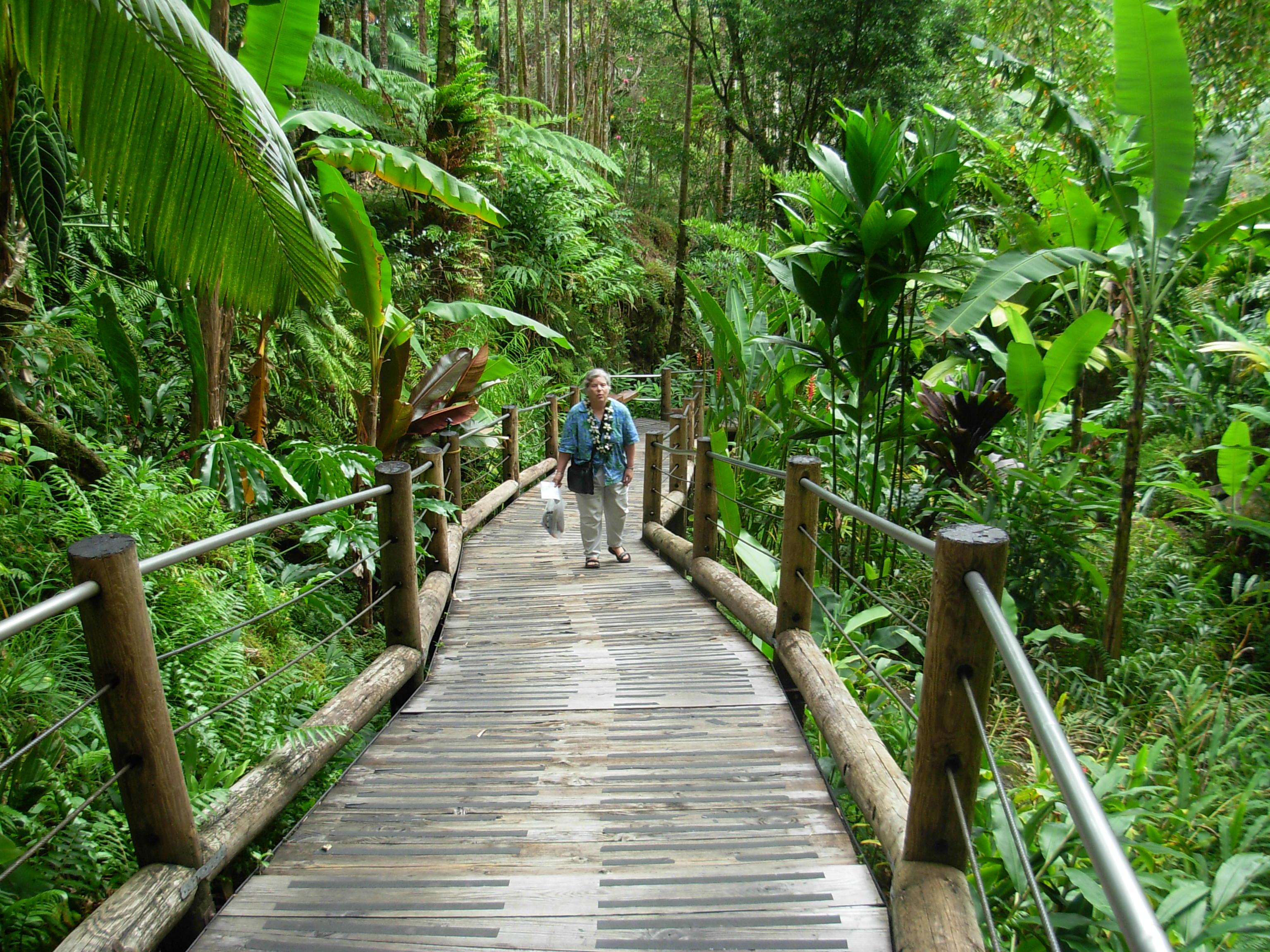 Botanical Gardens In Hawaii
