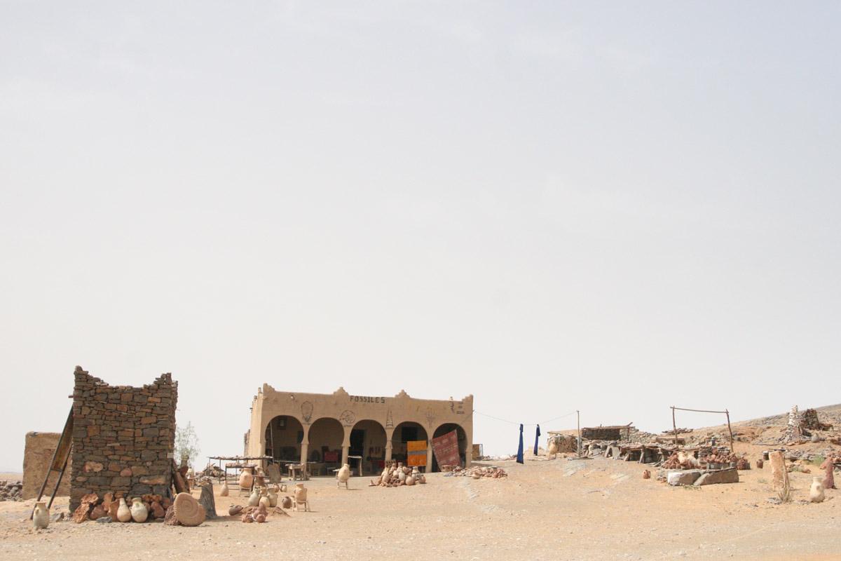 Erfoud Morocco  City pictures : Description Fossil Shop Erfoud Morocco