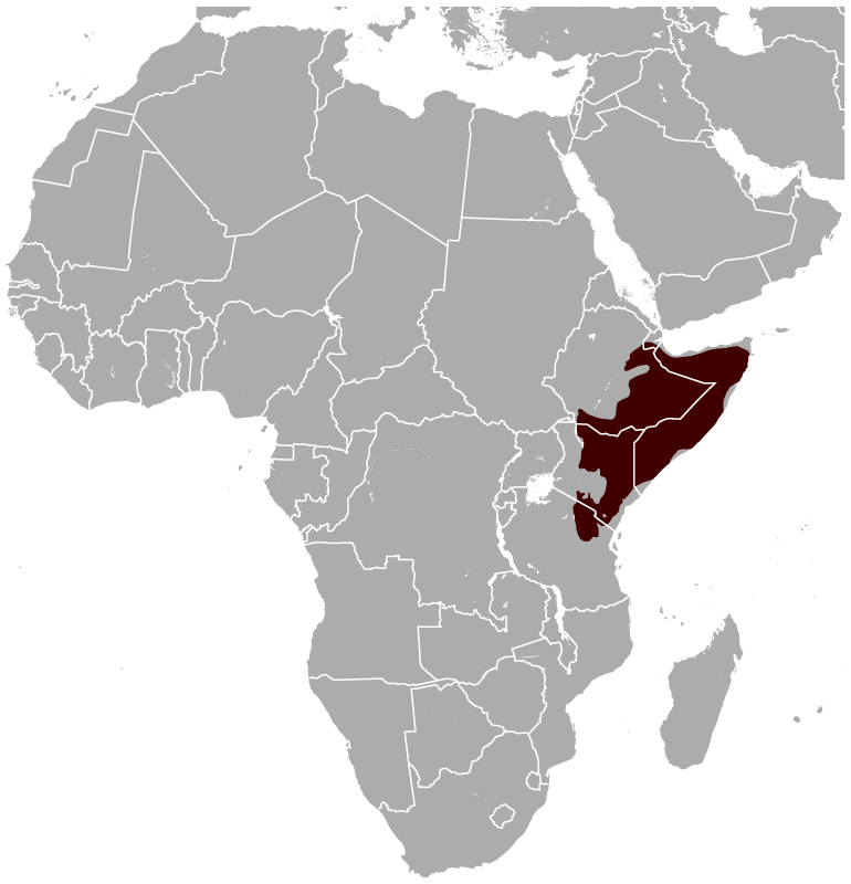 Gerenuk Litocranius walleri distribution map