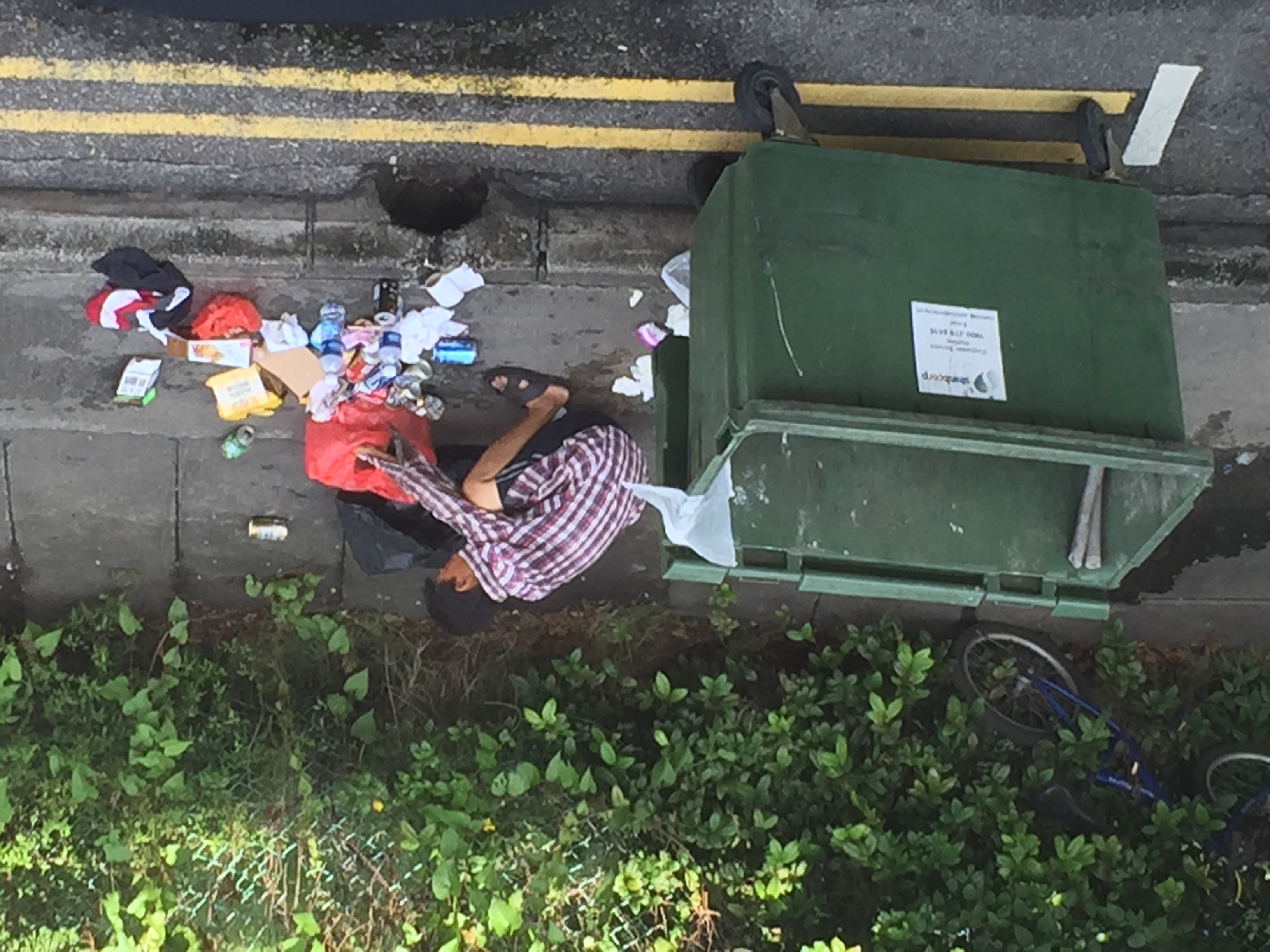 File:Guy sadly dumpster diving outside my window.jpg - Wikimedia Commons