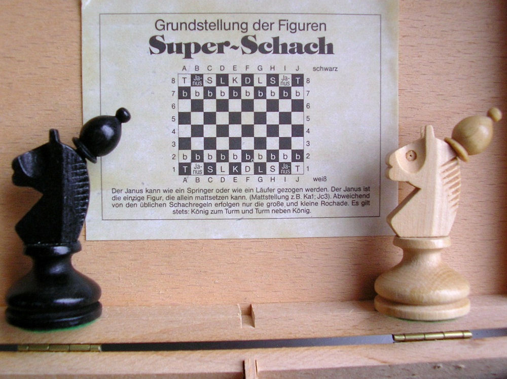 Image result for janus schach