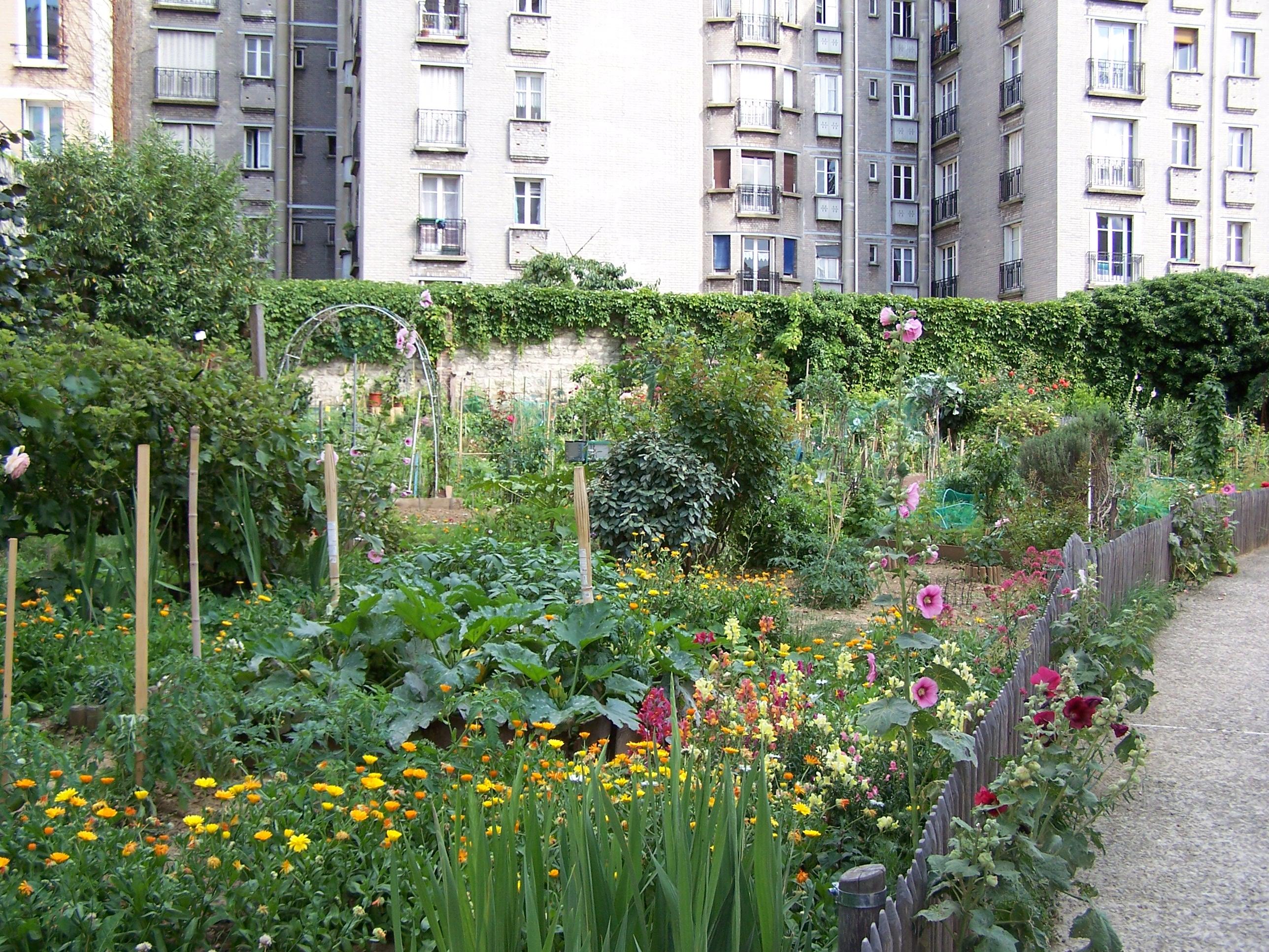 File jardin d 39 immeubles du boulevard de l 39 h pital jpg for Boulevard du jardin exotique