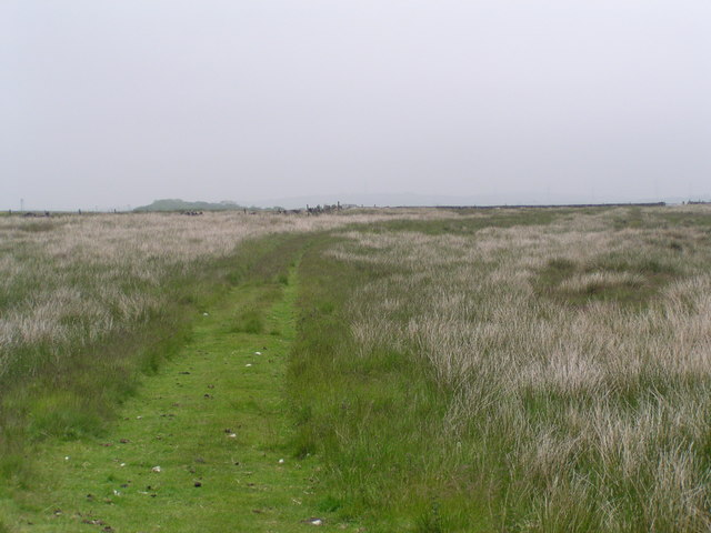 Millennium Way towards Long Causeway, Denholme - geograph.org.uk - 458804