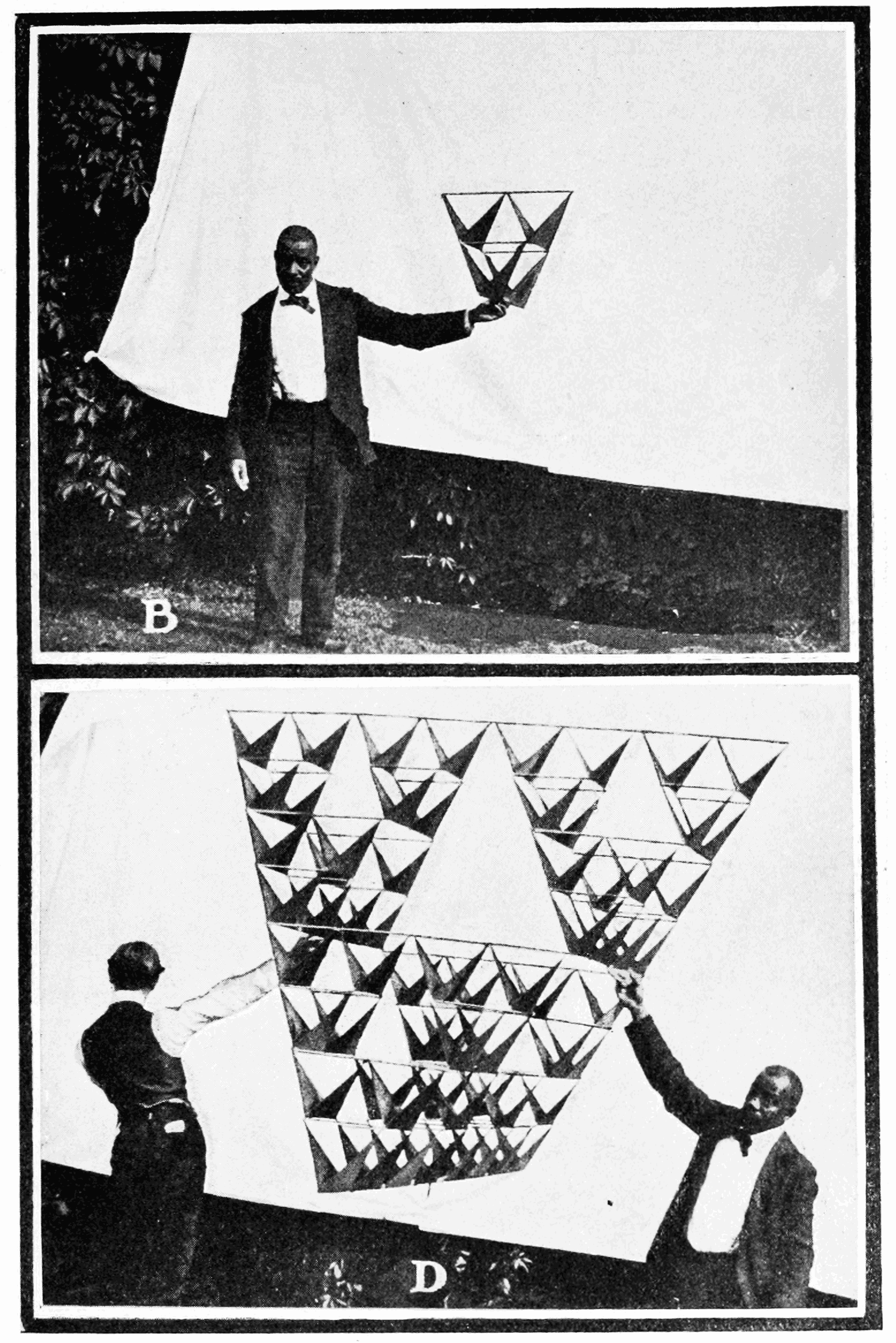 PSM V64 D139 Four and sixty four celled kites.png