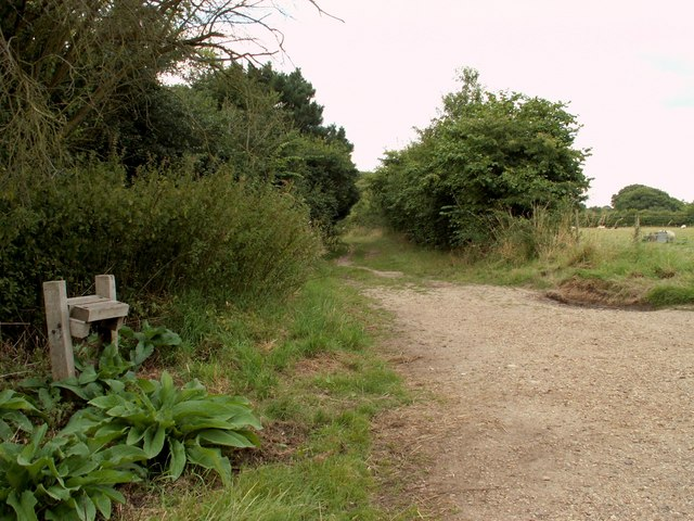 Part of the Stour Valley Path at Flatford - geograph.org.uk - 511731