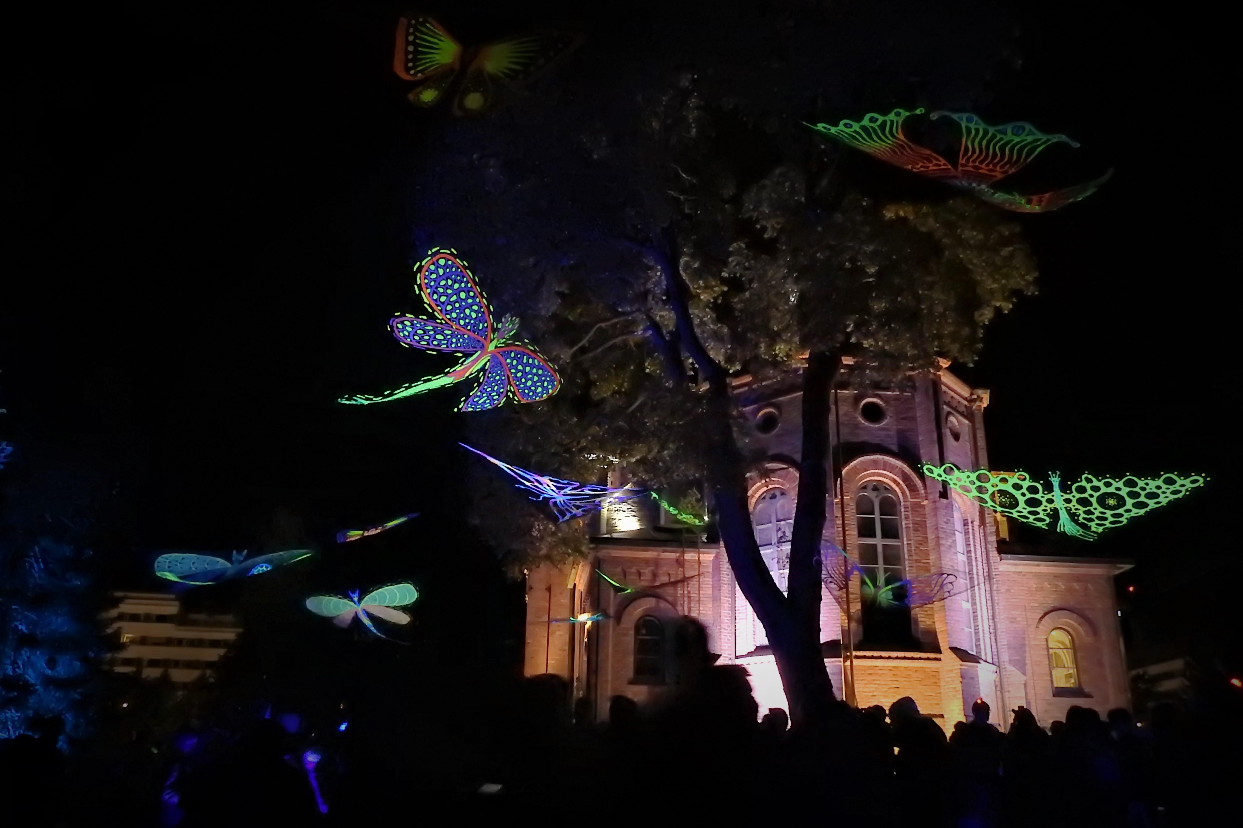 Perhoset valotaidetta Jkl kirkkopuistossa.jpg